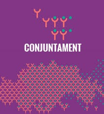 Conjuntament